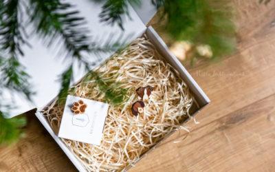 Leias Geburtstag: Gewinne eine Hundebrosche